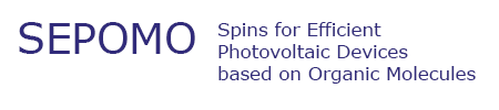 Spins for Efficient Photovoltaic Devices based on Organic Molecules